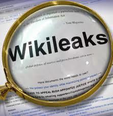 Türk Girişimcisi Wikileaks'i Atlamadı