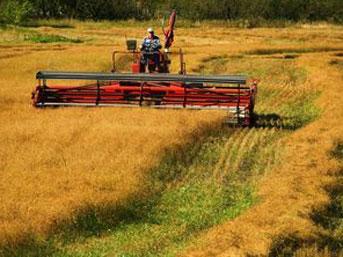 Çiftçiye Yüzde 50 Destek Verilecek