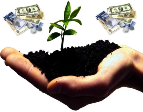 Tarım ve Gıda Girişimcileri İçin 18 Girişim Önerisi