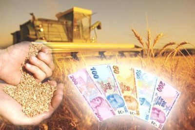 Kırsal Kalkınma (IPARD) Yatırımları İçin Hibe Destekleri Açıklandı!