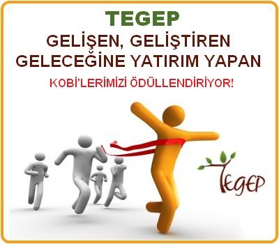 TEGEP Geleceğine Yatırım Yapan KOBİ'leri Ödüllendiriyor!