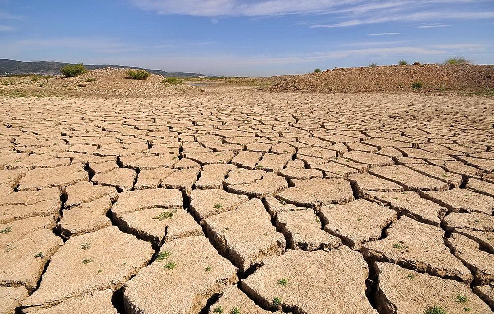 Susuz Bir Gezegenin Geleceği İçin Girişimci Çözümler