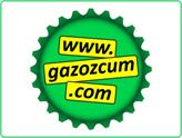 Anılarınızı Canlandıran Yerel Gazoz Odaklı E-Ticaret Girişimi: Gazozcum
