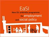 İstihdam ve Sosyal Yenilik Programı Tanıtım Toplantısı Gerçekleştirildi!