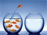 TÜİK: Son 3 Yılda Ayakta Kalan Girişimcilerin Yarısı Yenilikçi Girişimler!