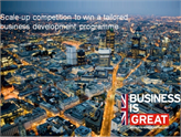 GREAT Scale-Up Türk Girişimcilere Birleşik Krallık'ın Kapılarını Açıyor!
