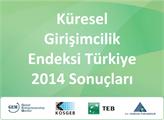Türkiye'nin 2014 Küresel Girişimcilik Endeksi Sonuçları Açıklandı!