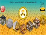 Türkiye Arıcılık Sektörü Dünya Zirvesini Hedefliyor!