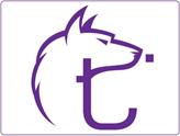 Siber Güvenliğinize Güç Katan Yerli Teknopark Girişimi: TINA!