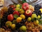 Yaş Meyve Sebze ve Mamulleri İhracatçıları Sanal Pazar Kurdu!