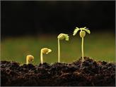 Sadece Büyümeye Değil, Sürdürülebilir Büyümeye Odaklanmalıyız!