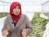 Tarım Bakanlığı'nın Genç Çiftçi Projesi Bir Çok Hayatı Değişti!