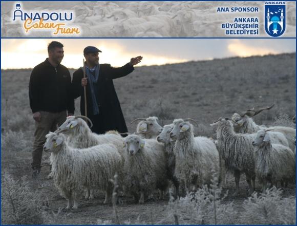 Türkiye'de bir ilk: Anadolu Yetiştiriciler, Canlı Hayvan ve Çobanlar Fuarı!